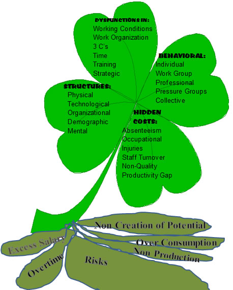 The 4-Leaf Clover Diagnosis with deep root stems
