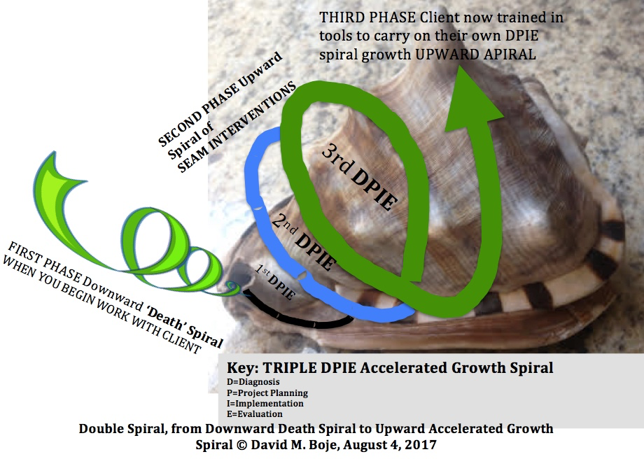 Boje's Death Spiral transfromation to Growth Spiral interventions
