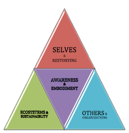 small Triangle Model of Awareness